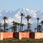 The Kingdom of Morocco Increases Investments in Africa